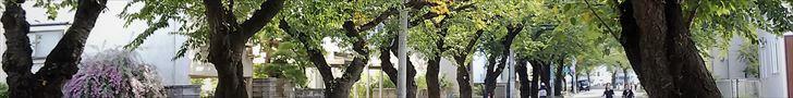 マチマップ桜川
